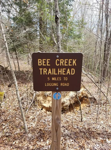Bee-Creek-connector-trailhead